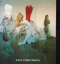 Catalogue de Dana Zamecnikova